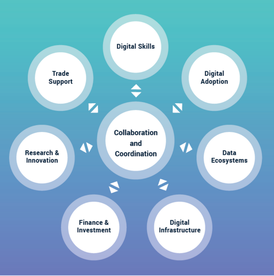 Local Digital Capital Diagram